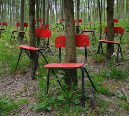 Genial The Wedding Was Abandoned, And So Were The Chairs Due To The German  Invasion. They Were Found Again After The War With The Trees Growing  Through Them.